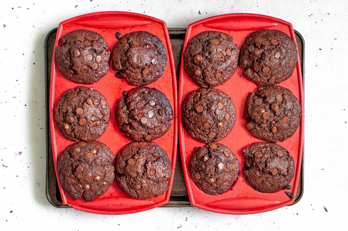 baked muffins fresh from the oven still in muffin tray